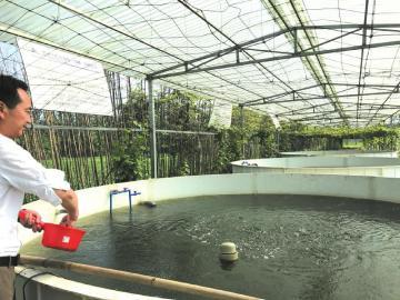 四川开启智能化玻璃钢池养鱼新模式 效益高!一口玻璃钢池的产量相当于4-6亩鱼塘!