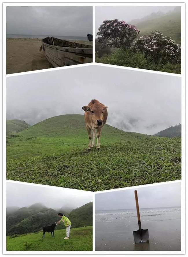 5月1日,阳西蓝袍蓝看海,阳春鸡笼顶登山赏高山杜鹃