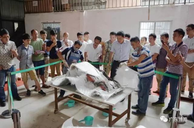 中国不饱和聚酯树脂行业协会 华南玻璃钢新技术交流培训中心第三期玻璃钢模具制作培训班-16